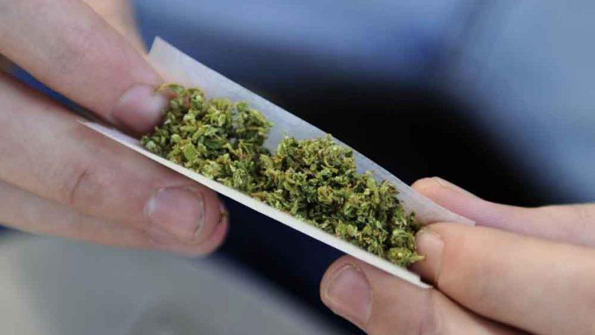 marihuana-hachís-colegios-mostoles